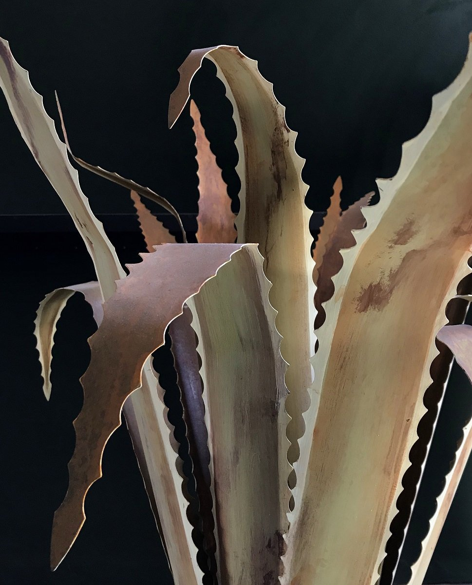 Agave_Detail